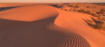 Simpson Desert Club Run